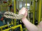 Какая сила скрывается в руках рукоборца?