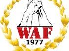 Кризис WAF