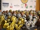 Чемпионат Венгрии-2017: обзор
