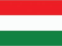 Чемпионат Мира 2013 - команда Венгрия