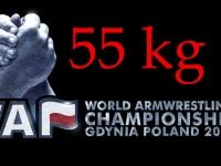 Гдыня, Чемпионат Мира 2013