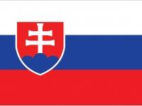 Чемпионат Мира 2013 - команда Словакия